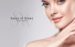 Beauty, Aesthetics, HD Brows logo design and branding