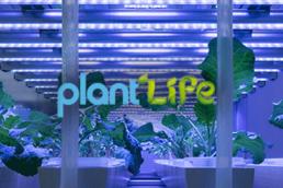 Plantlife Hydroponics Website